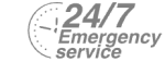 24/7 Emergency Service Pest Control in Loughton, High Beach, IG10. Call Now! 020 8166 9746